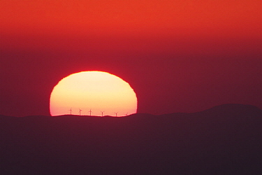 Windmills on ridge at sunset, France
