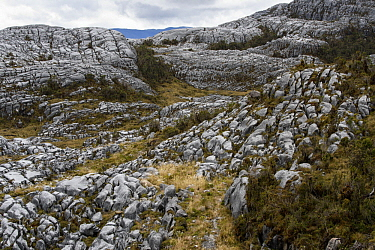 Limestone rock formations, Snow Mountains, Papua, Indonesia