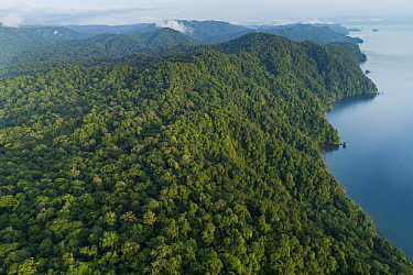 Mountains along lake with choco rainforest, Utria National Park, Colombia