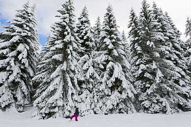 Women hiking in winter, France