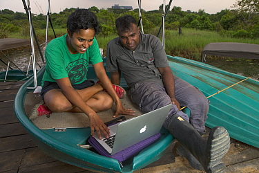 Fishing Cat (Prionailurus viverrinus) biologists, Anya Ratnayaka and Maduranga Ranaweera, reviewing camera trap images in urban wetland, Urban Fishing Cat Project, Diyasaru Park, Colombo, Sri Lanka