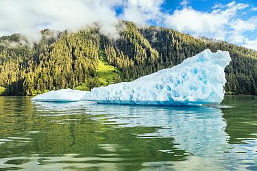 Iceberg along coast, LeConte Bay, southeast Alaska