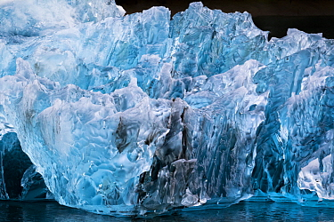 Iceberg, LeConte Bay, southeast Alaska