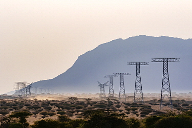 Power poles for solar power energy, Westgate Community Conservancy, Naibelibeli Plains, Kenya