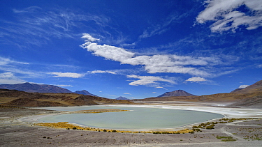Lake in altiplano, Green Lake, Bolivia