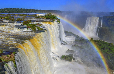 Rainbow over waterfall, Iguacu Falls, Brazil