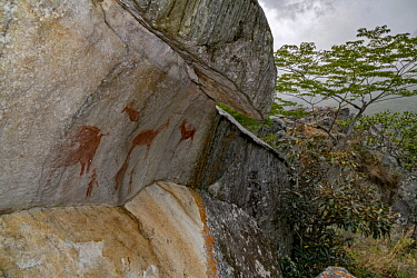 Rock art, approximately 7,000 years old, by San bushmen, Chimanimani Mountains, Mozambique