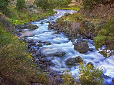 Gardiner River, Yellowstone National Park, Wyoming