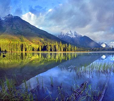 Mount Moran, String Lake, Grand Teton National Park, Wyoming