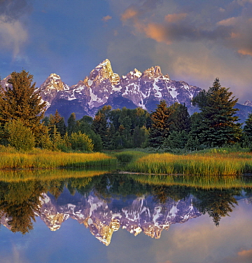 Grand Tetons from Schwabacher Landing, Grand Teton National Park, Wyoming
