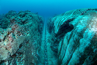Mooring chain which has carved trench into coral reef, Christmas Island, Australia