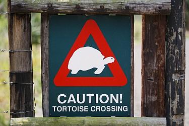 Tortoise warning sign, Mkhuze Game Reserve, KwaZulu-Natal, South Africa