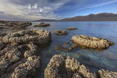 Calcium formations, Sarmiento Lake, Torres del Paine National Park, Patagonia, Chile
