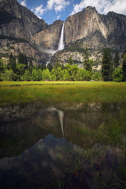 Waterfall reflected in flooded meadow, Yosemite Falls, Yosemite National Park, California