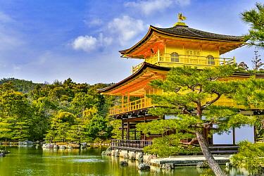 Kinkaku-ji Temple, Kyoto, Japan