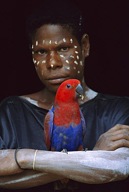 Aboriginal woman with a female Eclectus Parrot (Eclectus roratus), Karowari River, Papua New Guinea  -  Patricio Robles Gil/ Sierra Madr