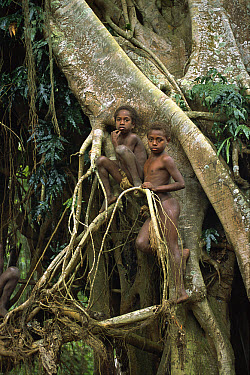 Young boys of the village of Yakel, Tanna Island, Vanuatu Archipelago, New Hebrides  -  Patricio Robles Gil/ Sierra Madr