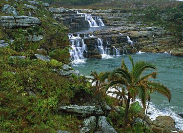 Coastal waterfall, Mkambati Nature Reserve, South Africa  -  Patricio Robles Gil/ Sierra Madr