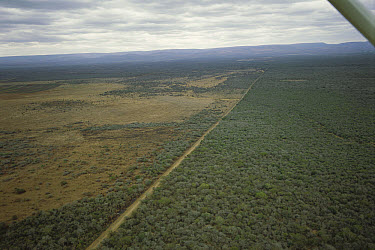 Aerial showing forest transformed into farmlands, Ndumu Game Reserve, South Africa  -  Patricio Robles Gil/ Sierra Madr