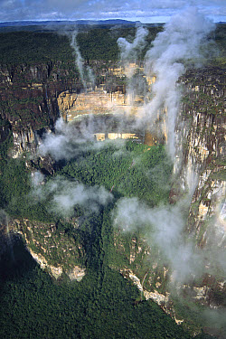 Mist spiraling in front of the cliffs of the Tepui, Canaima National Park, Venezuela  -  Patricio Robles Gil/ Sierra Madr