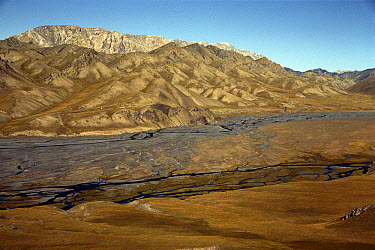 Tien Shan Mountain landscape, Kyrgyzstan  -  Patricio Robles Gil/ Sierra Madr