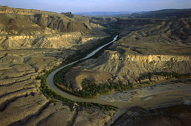 Rio Grande flowing through arid landscape in the Sierra del Carmen region, Mexico  -  Patricio Robles Gil/ Sierra Madr