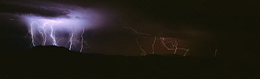 Lightning storm at night over the Sierra del Carmen range, Mexico  -  Patricio Robles Gil/ Sierra Madr