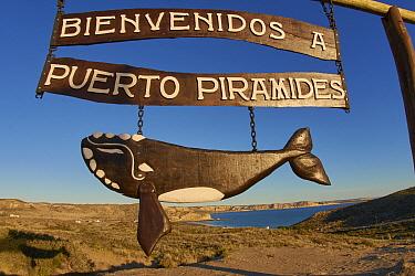 Rights Whale sign, Puerto Piramides, Peninsula Valdez, Chubut, Argentina