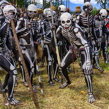 Skeleton warriors, Mount Hagen Show, Western Highlands, Papua New Guinea