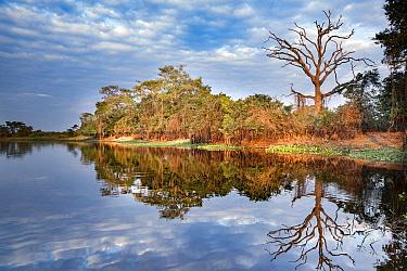 River, Pantanal, Brazil