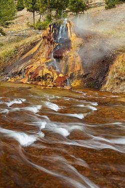 Chocolate Geyser, Gibbon River, Yellowstone National Park, Wyoming