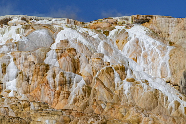 Travertine formations, Canary Spring, Mammoth Hot Springs, Yellowstone National Park, Wyoming