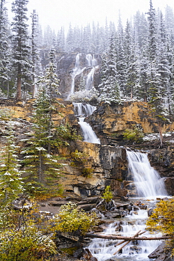 Waterfall after autumn snowfall, Tangle Creek Falls, Jasper National Park, Alberta, Canada