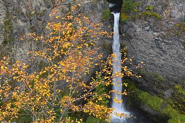 Spahat Falls, Spahats Creek, Wells Gray Provincial Park, British Columbia, Canada