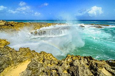 Coast, Aruba, Caribbean