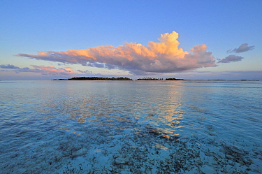 Tropical island, Saint Joseph Atoll, Seychelles