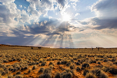 Sunrays over desert, Namib-Naukluft National Park, Namibia