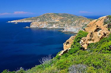 Coast, Revellata Peninsula, Corsica, France