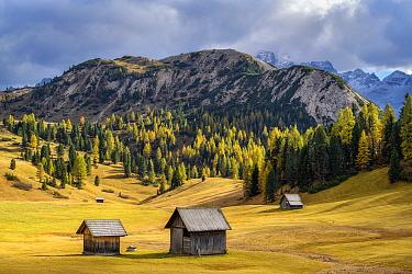 Prato Piazza Pasture, Fanes-Senes-Braies Nature Park, Dolomites, Tyrol, Italy,UNESCO World Heritage Site