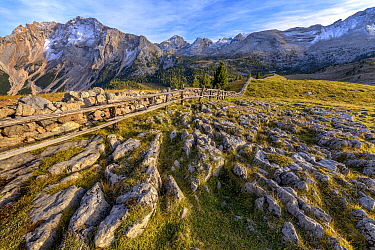 Cattle fence, Val di Fanes, Fanes-Sennes-Braies Nature Park, Dolomites, Tyrol, Italy, UNESCO World Heritage Site