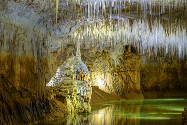 Concretions and soda straws, fine stalactites, Choranche Caves, Vercors Massif, Isere, France