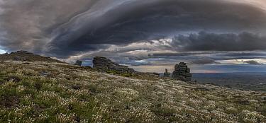 Clouds over grassland, Rock and Pillar Range, Otago, New Zealand