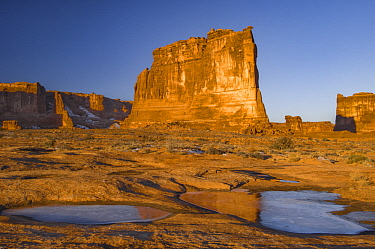 Rock formation reflected in pool with ice, The Organ, Arches National Park, Utah