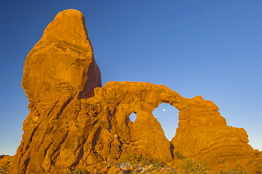 Full moon and Turret Arch, Windows Section, Arches National Park, Utah