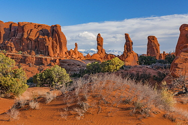 Marching Men formation, Arches National Park, Utah