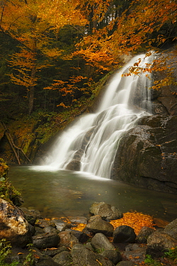 Waterfall in autumn, Moss Glen Falls, Vermont