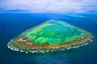 Tropical island, One Tree Island, Great Barrier Reef, Queensland, Australia
