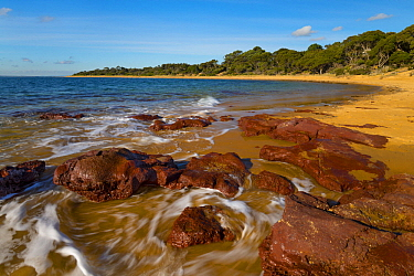 Coast, Red Rock Beach, Phillip Island, Victoria, Australia