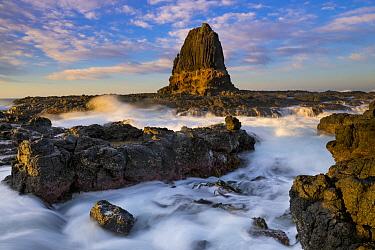 Rock formation at sunrise, Pulpit Rock, Cape Schanck, Mornington Peninsula, Victoria, Australia