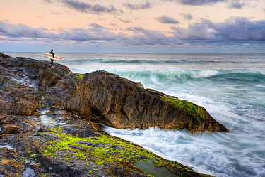 Surfer, Solitary Islands Marine Park, New South Wales, Australia
